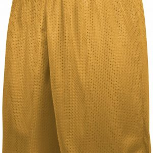 Image for TRICOT MESH SHORTS